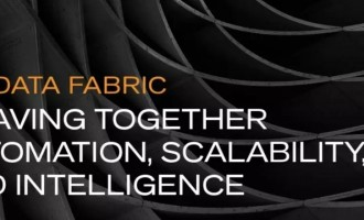 大数据结构将自动化,可扩展性和智能融合在一起